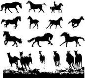 Silhuetas do cavalo ajustadas Imagens de Stock