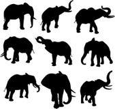 Silhuetas do elefante Imagens de Stock
