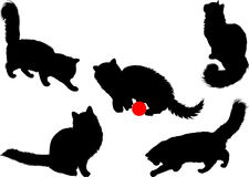 Silhuetas do gato Imagens de Stock Royalty Free