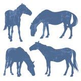 Silhuetas do Grunge dos cavalos Imagem de Stock