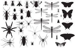 Silhuetas do inseto imagem de stock