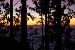 Silhuetas do mar e da floresta da nuvem Fotografia de Stock Royalty Free