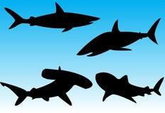 Silhuetas do tubarão Imagens de Stock