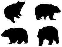 Silhuetas do urso detalhado Fotos de Stock Royalty Free