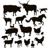 Silhuetas do vetor de animais de exploração agrícola Fotos de Stock