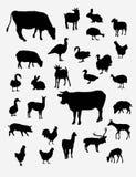 Silhuetas do vetor de animais de exploração agrícola Imagens de Stock