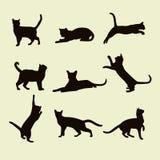 Silhuetas do vetor dos gatos Foto de Stock