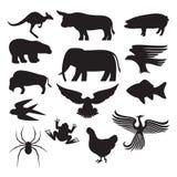Silhuetas dos animais Foto de Stock