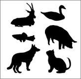 Silhuetas dos animais Fotografia de Stock Royalty Free