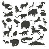Silhuetas dos animais de America do Norte, isoladas na ilustração branca do vetor do fundo Grupo grande do vetor do contorno pret Fotografia de Stock Royalty Free