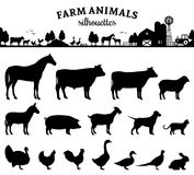 Silhuetas dos animais de exploração agrícola do vetor no branco Imagem de Stock