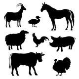 Silhuetas dos animais de exploração agrícola Fotografia de Stock Royalty Free