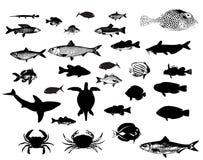 Silhuetas dos animais de mar ajustadas Fotografia de Stock
