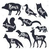 Silhuetas dos animais selvagens com rotulação Ilustração do vetor Imagem de Stock Royalty Free
