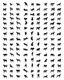 Silhuetas dos cães Imagens de Stock Royalty Free