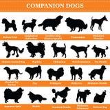 Silhuetas dos cães do companheiro do vetor ilustração do vetor