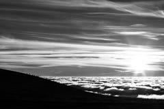 Silhuetas dos cavalos em uma montanha sobre um mar da névoa fotos de stock