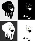 Silhuetas dos gatos Imagem de Stock Royalty Free