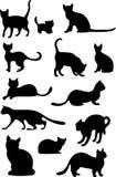 Silhuetas dos gatos Imagem de Stock