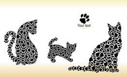 Silhuetas dos gatos das trilhas do gato Fotos de Stock