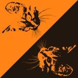 Silhuetas dos gatos em um fundo marrom e alaranjado Vetor Fotos de Stock Royalty Free