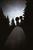 Silhuetas dos noivos que beijam na natureza do fundo Fotografia de Stock