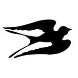 Silhuetas dos pássaros da andorinha Fotos de Stock