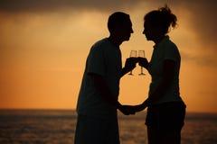 Silhuetas dos pares com vidros no por do sol Imagem de Stock Royalty Free