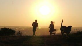 Silhuetas dos pares felizes que jogam o corredor com seu cão bonito durante o por do sol filme