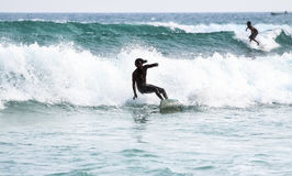Silhuetas dos surfistas Foto de Stock
