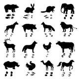 Silhuetas e trilhas dos animais ajustadas ilustração royalty free