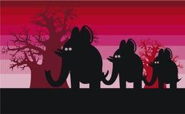 Silhuetas engraçadas do elefante Fotografia de Stock