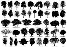 Silhuetas pretas da árvore Fotos de Stock Royalty Free