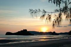 Silhuetas tropicais do por do sol Foto de Stock Royalty Free