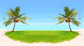 Silhuetas tropicais no por do sol Fotografia de Stock Royalty Free