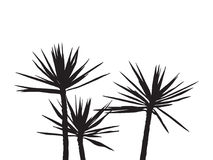 Silhuette Palm on the white background Royalty Free Stock Photo