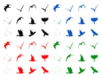 silhuettes птиц Стоковые Изображения