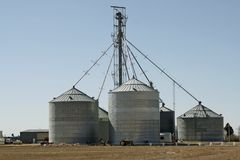 Sili dell'azienda agricola Fotografie Stock Libere da Diritti