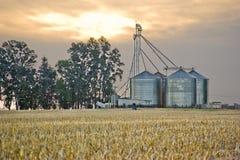 Sili di granulo e campo di frumento potato Immagini Stock Libere da Diritti