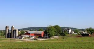 Sili e fattorie fuori nel paese Fotografia Stock Libera da Diritti