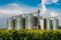 sili Magazzino per la conservazione del grano Immagini Stock Libere da Diritti