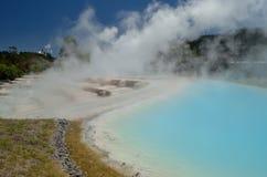 Silica terraces and a geyser Stock Photos
