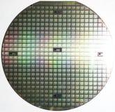 Siliciumwafeltje, veelvoudige chips royalty-vrije stock afbeelding