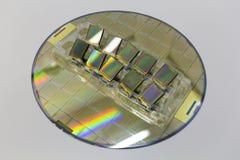 Siliciumwafeltjes en kant-en-klare microchips die in een dienblad op de oppervlakte liggen royalty-vrije stock afbeelding