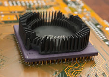 Silicon chip Royalty Free Stock Photography