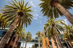Silicon Valley, Etats-Unis Photographie stock libre de droits