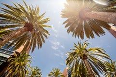 Silicon Valley, U.S.A. Fotografia Stock
