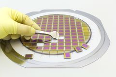 Silicon wafer with microchips, fixed in a holder with a steel frame on a gray background after the process of dicing. Microchip. Silicon wafer with microchips stock image