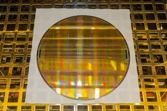 Silicon Wafer with microchips in the oven with gold pallet royalty free stock photo