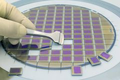 Free Silicon Wafer With Microchips, Fixed In A Holder With A Steel Frame On A Gray Background After The Process Of Dicing. Microchip Royalty Free Stock Photos - 155339978
